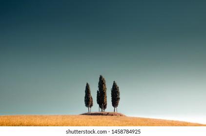 Panoramasicht auf die typische toskanische Landschaft mit einer Gruppe von Zypressenbäumen am blauen Himmel mit schönem goldenem Abendlicht bei Sonnenuntergang, Toscana, Italien, Südeuropa