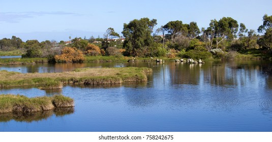 Scenic panoramic beautiful tranquil  view  of the reflected landscape from  the cycle way  at the Big Swamp Wetlands  in Bunbury Western Australia on a fine spring day.