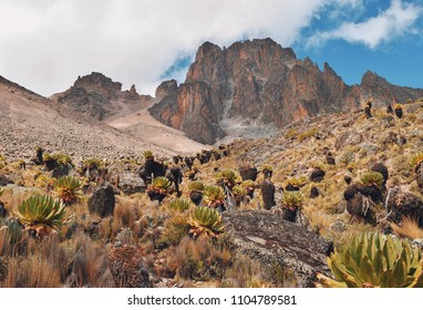 The scenic peaks of Mount Kenya, Mount Kenya National Park