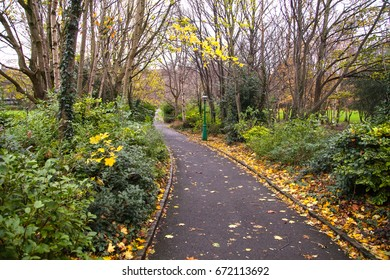 Scenic picture of a walkway in the autumn nature outdoor