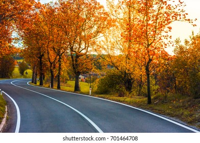 Scenic road in autumn