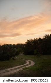 Scenic road in the forest during late summer evening