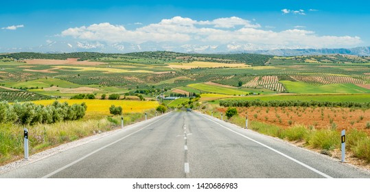 A scenic road on a hot summer day in the Sierra Nevada with snowy mountains in the background, Andalusia, Spain.
