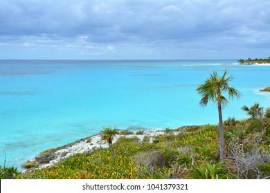 Scenic sea view from the coast of Eleuthera island. Coastal flora
