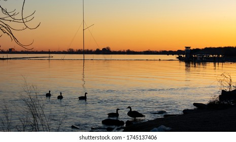 Scenic shot of Detroit river at sunrise with ducks silhouetted against orange water. Clam water with horizon line silhouetted. Taken from low point of Belle Isle Michigan State Park.