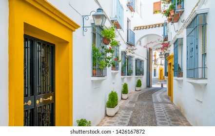 Scenic sight in the picturesque Cordoba jewish quarter. Andalusia, Spain.