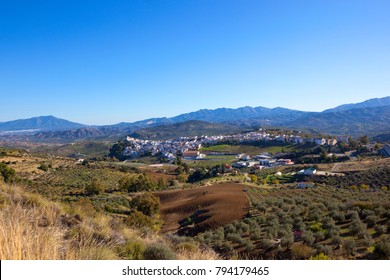 a scenic spanish town of alfina in andalusia with white buildings dry grassses olive groves and mountain scenery under a blue sky