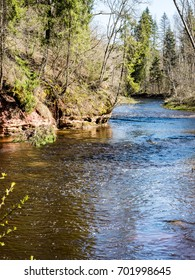 scenic spring colored river in country with trees and reflections - vertical, mobile device ready image