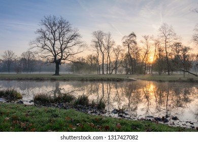 Scenic spring view of Stromovka town park in Prague, Czech Republic. Colorful sunrise