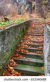 Scenic stone stairs among rusty colors foliage.