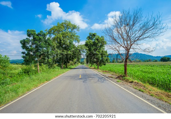 Scenic Summer Countryside Road. Summer Road Trip Concept Photo. Countryside Highway