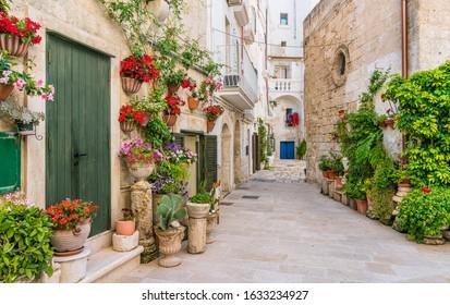 Scenic summer sight in Monopoli, Bari Province, Puglia (Apulia), southern Italy.