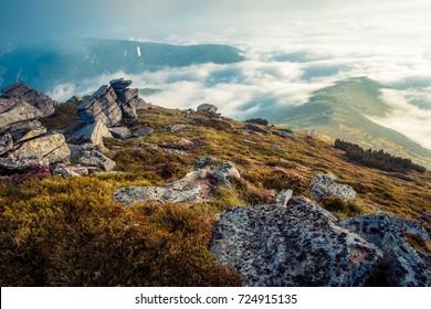 scenic summer sunrise in Carpathian mountains,  morning fog covered valley,  big stones on the peak of mountain, Ukraine, Europe, Chornogora ridge, wonderful wallpaper background landscape