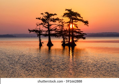 Scenic sunrise,  Reelfoot Lake Tennessee