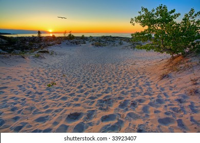 Scenic sunset in the dunes of Northern Michigan