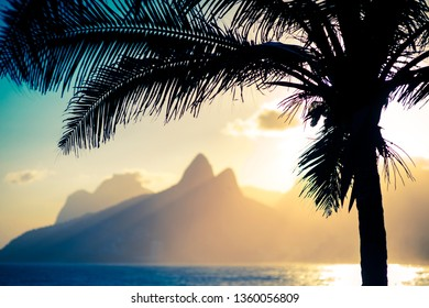 Scenic sunset view of Two Brothers Mountain framed by the silhouette of a palm tree in Ipanema Beach, Rio de Janeiro, Brazil