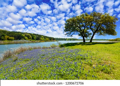 Scenic Texas Hill Country landscape with blooming bluebonnets.