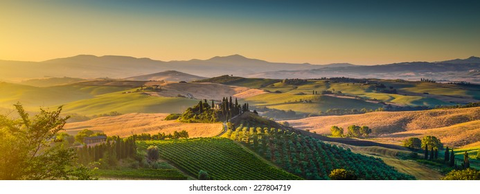 Scenic Tuscany landscape panorama with rolling hills and harvest fields in golden morning light, Val d'Orcia, Italy