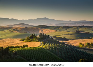 Scenic Tuscany landscape with rolling hills and valleys in golden morning light, Val d'Orcia, Italy