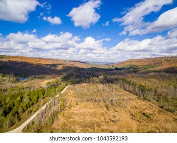 scenic view above the trees in a valley