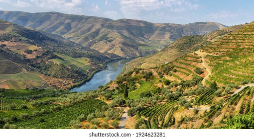 Scenic view of Alto Douro Vinhateiro, Tua Valley in Portugal.
