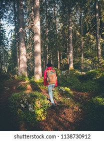 Scenic view of a backpacking woman walking in the forrest at sunrise, Hintersee, Berchtesgaden, Germany