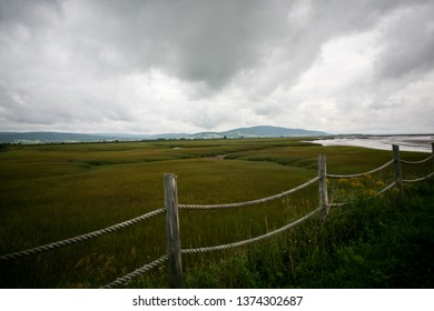 A scenic view of the Bay of Fundy coast and wetlands in New Brunswick