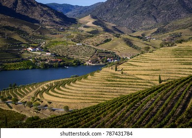 Scenic view of the beautiful Douro Valley with vineyards and terraced slopes in the Douro Region, Vila Nova de Foz Coa, Portugal; Concept for visit Portugal and most beautiful places in Portugal.
