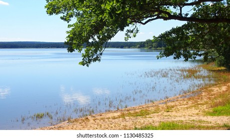 A scenic view of beautiful Dvoriste pond near Trebon city in South Bohemia, Czech Republic.