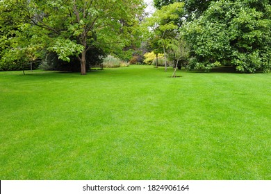 Scenic View of a Beautiful English Landscape Style Garden with a Large Open Lush Green Grass Lawn