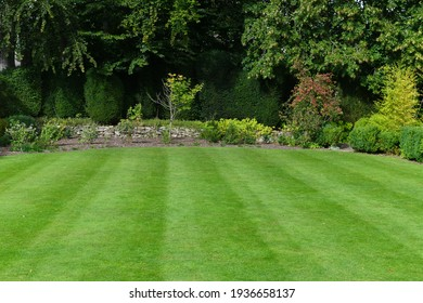 Scenic View of a Beautiful Garden with a Freshly Mowed Lawn