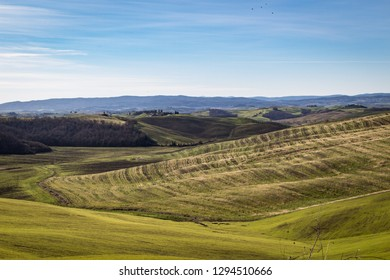 Scenic view of beautiful landscape in Tuscany countryside. Rolling hill and plowed fields.  Asciano, Siena, Italy