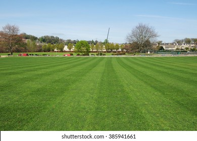 Scenic View of a Beautiful Large Lawn in a Town Garden