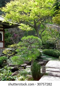 scenic view of beautiful spring Japanese garden