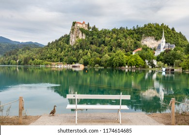 Scenic view before sunrise of Lake Bled and a castle in Julian Alps, Slovenia. The most beautiful lake in the slovenian mountains.