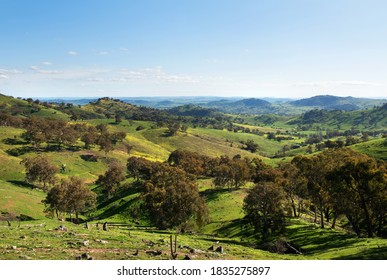 A scenic view between Wyangala and Cowra, in New South Wales, Australia