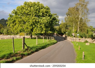 Scenic View of a Country Road through Wiltshire England