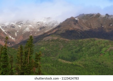 Scenic view of Denali, with mountain range and green valleys.