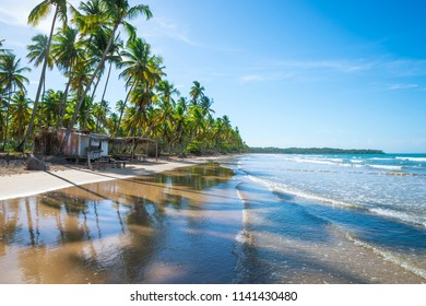 Scenic view of a desolate Brazilian beach shack with shadows of palm trees falling on the white sand in Bahia, Brazil