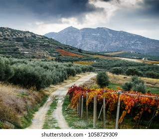 Scenic view of dirt road dirt road amidst the mountains and cultivated farm, Greece