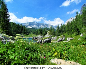 Scenic view of the Double lake in the Triglav lakes valley in Triglav national park and Julian alps, Slovenia with white and purple flowers in the front and the mountains of Veliko spicje in the back