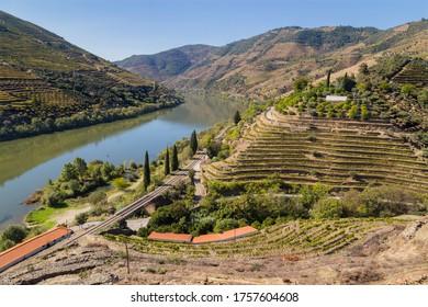 Vue panoramique sur la vallée du Douro et la rivière avec des vignobles en terrasse près du village de Tua, Portugal