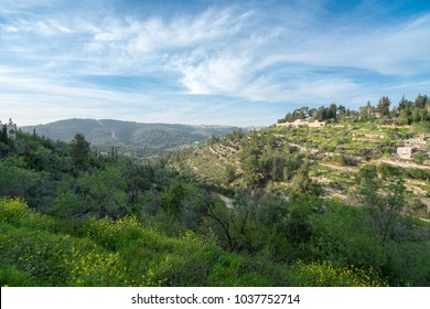 Scenic view of Ein Karem - an ancient village of the Jerusalem District and now a neighbourhood in southwest Jerusalem, Israel