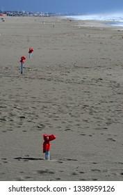 scenic view of the empty sandy beach of Versilia coastline, on a sunny winter day