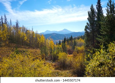 Scenic View of Fall Colors in the Colorado Mountains.  Colorful Fall Colors. Yellow Leaves Changing in the Mountains with a Beautiful View.