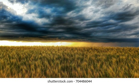 Scenic view of a field against cloudy sky