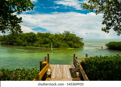 Scenic view of the Florida Keys with mangroves.