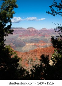 Scenic view of the Grand Canyon framed by pine trees.