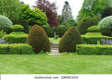 Scenic View of a Grass Lawn and Leafy Trees in a Beautiful English Style Garden