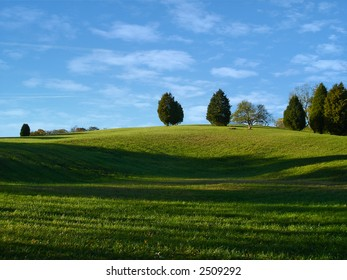 Scenic view of a grassy hill with trees in summer